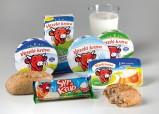 Test tavených sýrů 2013